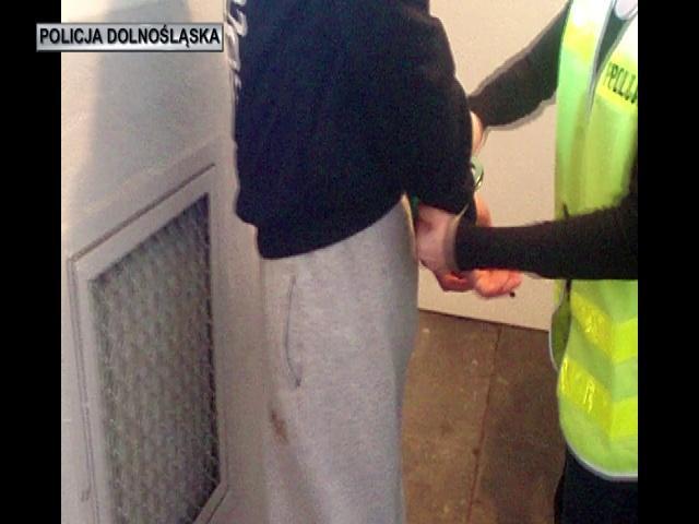 Dolnośląscy policjanci rozbili grupę przestępczą zajmującą się włamaniami dodomów