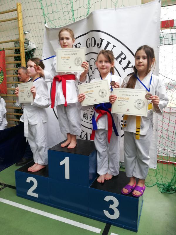 22   medale karateków