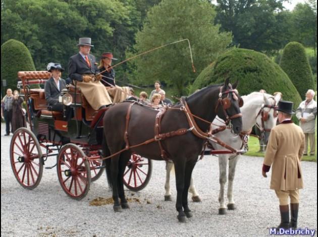 Pokaz historycznych zaprzęgów konnych na Partynicach