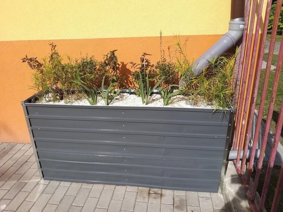 Ogród deszczowy dla Eko Przedszkolaków